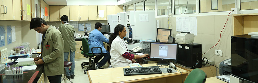 hematopathology services