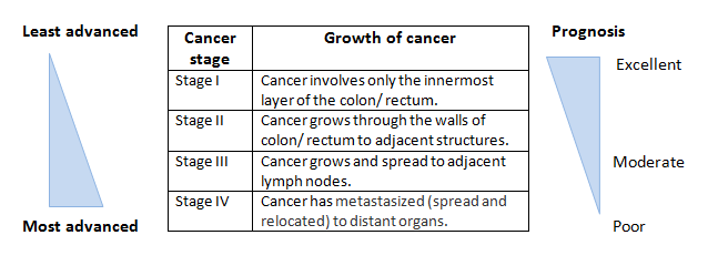 Colorectal Cancer Facts Symptoms Detection Diagnosis Rgcirc